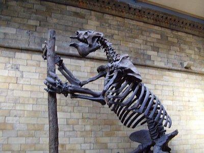V přírodovědném muzeu (nahrál: Jechort)