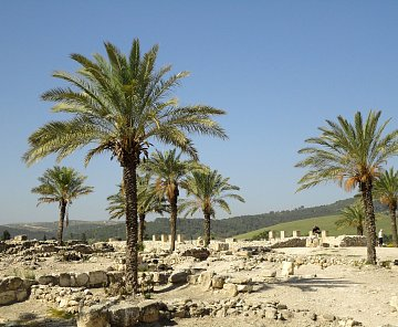 IZRAEL - MEGIDO,hora TABOR, NAZARET, KANA GAL. A TABGA